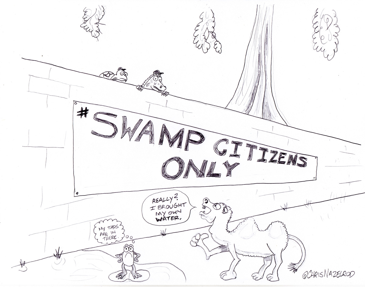 Day 11: Swamp Citizens